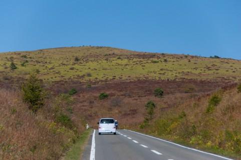 道路の直線